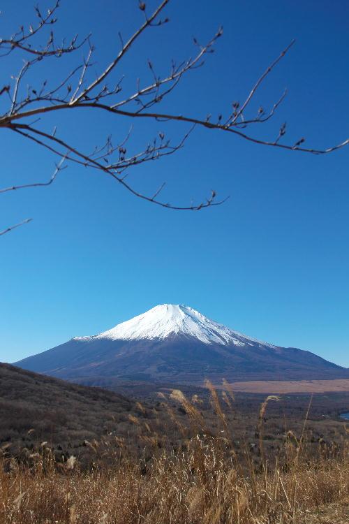 富士五湖-4 山中湖.jpg