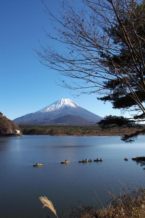 富士五湖-7 精進湖.jpg