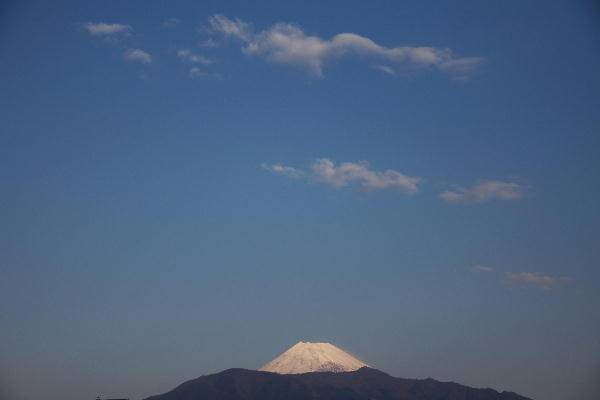 IMG_1832.jpg  1.2-8.07-今朝の富士山1.jpg