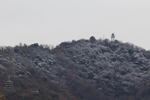 IMG_2314.jpg 1.17-9.22-雪の香貫山-314.jpg