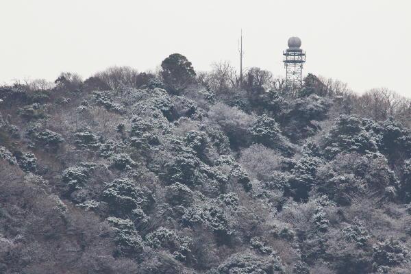 IMG_2312.jpg 1.17-9.22-雪の香貫山-312.jpg
