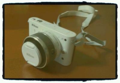 DSC_0454_edit0_convert_20120115235842.jpg