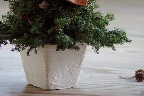ヒムロスギと木の実クリスマスツリー