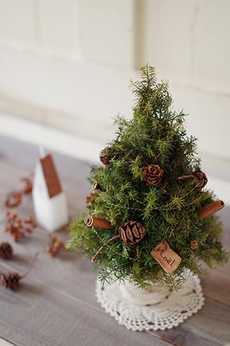 木の実のヒムロスギのナチュラルなクリスマスツリー