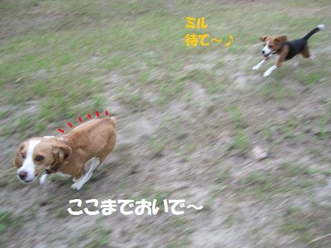 001_20110919212732.jpg