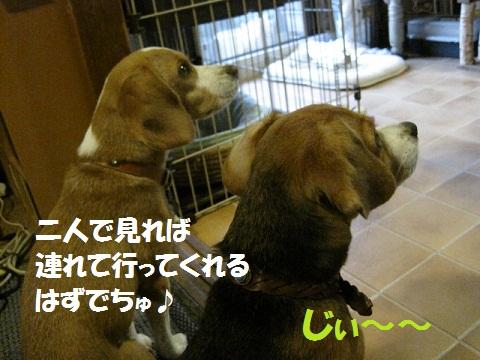 024_20110920200010.jpg