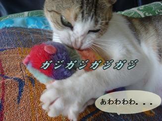 魚のおもちゃ5