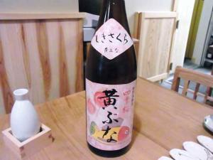 11-11-28 酒桜