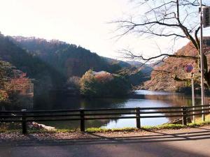 11-12-11 景色2