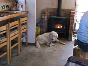 12-1-15 暖炉