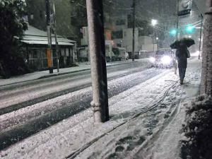 12-1-23夜 雪
