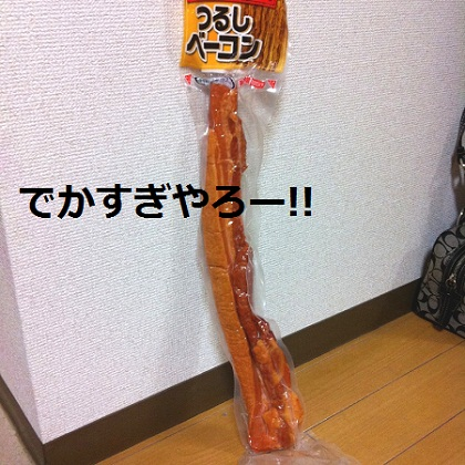 IMG_0847.jpg