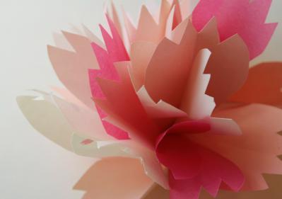 A07_pink_l.jpg