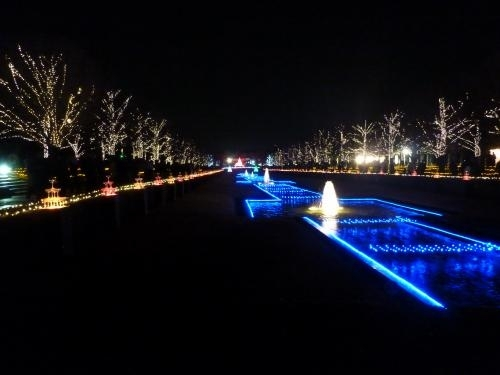 昭和記念公園イルミ4