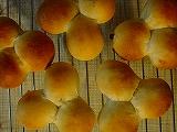 20090123_三つ子パン