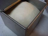 20090128_角食