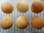 20101003_丸パン