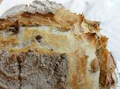 20101023_雑穀パン