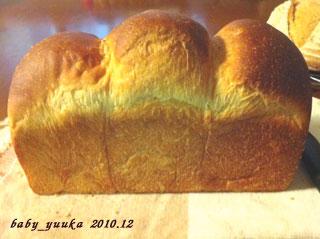 20101219_山食