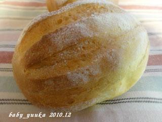20101228_うりぼう