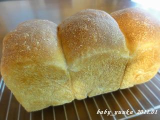 20110110_山食