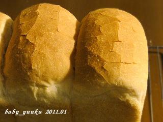 20110124_山食