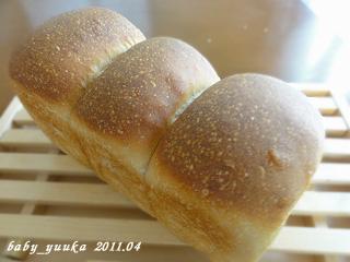 20110421_山食