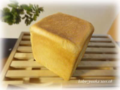 20110820_角食