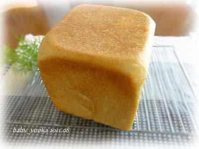 20110830_角食