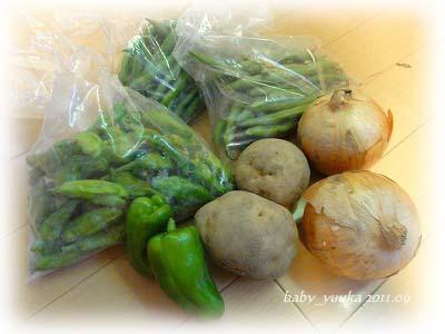 20110913_野菜