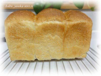 20111106_山食