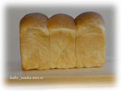 20111109_山食