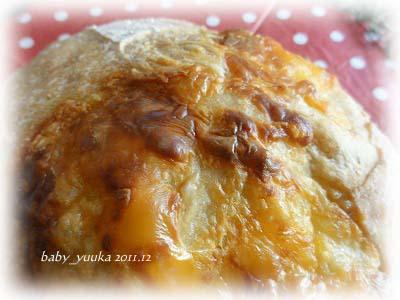20111229_チーズカンパ