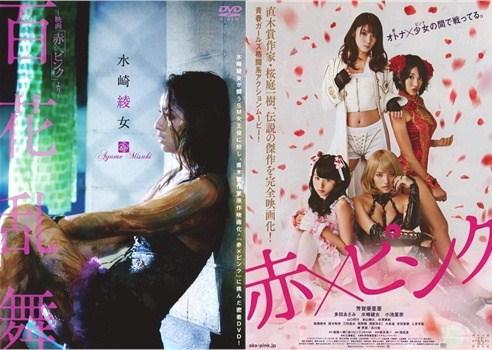 DVDパッケージ&チラシ