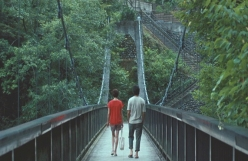 渓谷の吊り橋に行く