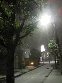 2012_01231002.jpg