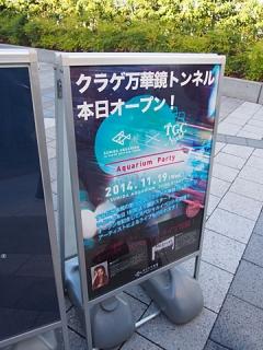2014_11190056.jpg