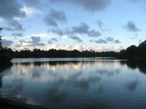Brooklyn の Prospect Park の池