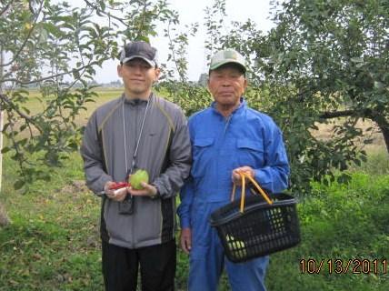 洋梨摘みの農業体験