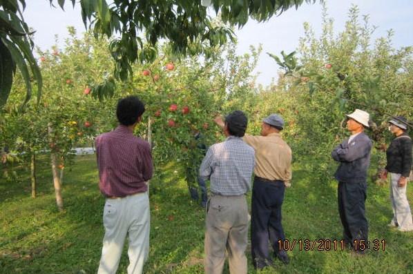 りんご園巡回指導