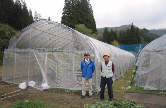 標高450かな・高糖度トマトを作るビニールハウス