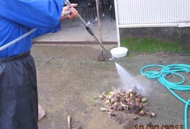 噴射機で芋洗い