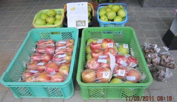 最盛期のりんご