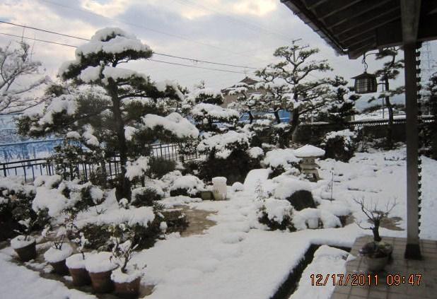 雪積もる(12・17)