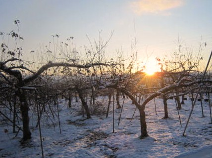冬至の候の日の出