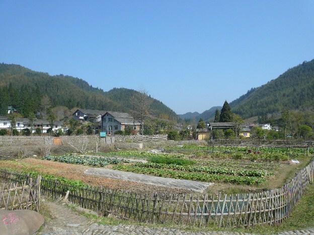 中国・井岡市の農村風景