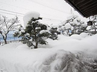 24年大雪