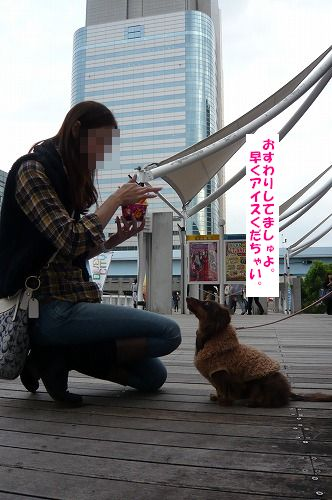 P1010625 編集