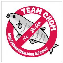 team-chom4.jpeg