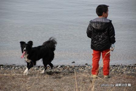 少年と黒い犬1